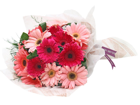 zabalene-kvetiny-frutiko